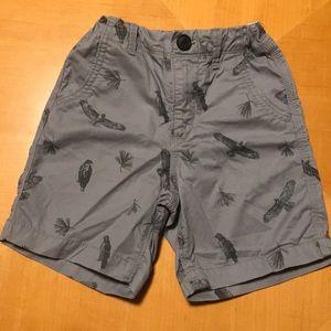Chino toddler shorts